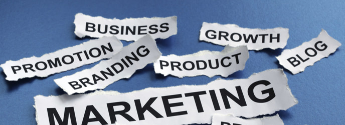 Marketing Manager Banner Image